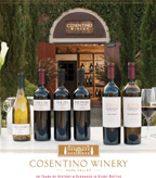 Cosentino Sell Sheet 2013