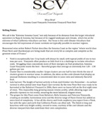 SCV Pinot Noir Wine Brief